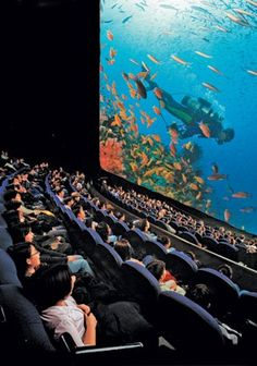 Our IMAX Screen is 60 feet tall (Combine that with surrond-sound and amazing IMAX Film Clarity)    Experience the IMAX at the Aquarium.