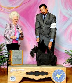 INVISIBLE TOUCH KENNEL Invisible Touch Wendy's 1st Major ( Handler Christopher Williams) Owner: Deborah Shaver ~ Texas, USA