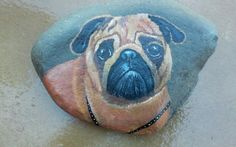 Painted pug rock