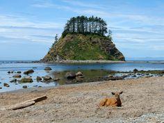 Cannonball Rock, Washington State