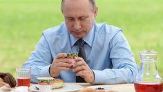 Путин произвел серию отставок и назначений в органах власти - Газета.Ru