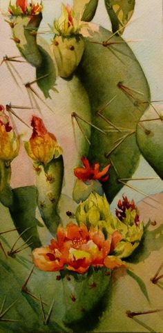 Donna Maclure | WATERCOLOR | Flowering Cactus