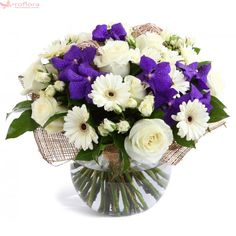 Collection of blue and white flowers Get Well Flowers, Thank You Flowers, All Flowers, Types Of Flowers, Wedding Flowers, Purple Carnations, Purple Orchids, Purple Flowers, Gerbera Daisies