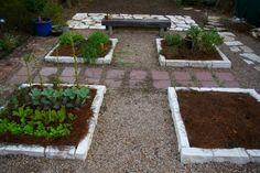 backyard garden, no lawn!