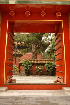 Surprising Destination Beijing  Beijing Entrance And Destinations With Handsome The Entrance Gate To The Imperial Garden Forbidden City Beijing China By With Delectable Jamie Oliver Restaurant In Covent Garden Also Gardening Jobs Norfolk In Addition Gardens Group And Fools Garden Lemon Tree As Well As Garden Shelter Additionally Homely Garden Centre From Pinterestcom With   Handsome Destination Beijing  Beijing Entrance And Destinations With Delectable The Entrance Gate To The Imperial Garden Forbidden City Beijing China By And Surprising Jamie Oliver Restaurant In Covent Garden Also Gardening Jobs Norfolk In Addition Gardens Group From Pinterestcom
