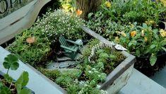 Fairy garden box with its tiny Adirondack. by Errikos Artdesign