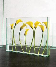 "These mini calla lilies take on a unique look in this creative glass vase - making the mini calla lilies have an almost ""floating"" effect. Shop mini calla lilies year-round in a variety of colors at GrowersBox.com!"