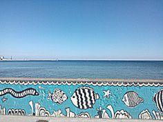 #Gdynia #sea #fish
