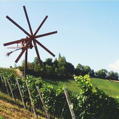Styria, Austria Places Around The World, Around The Worlds, Vienna Woods, Heart Of Europe, Austria Travel, Switzerland, Germany, Fair Grounds, Sweet