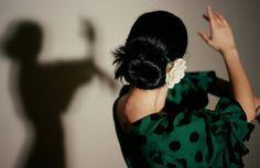 Flamenco shadows.