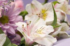 Prolonga la vida de tu ramo de flores