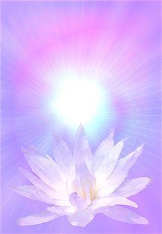 """Receive Your FREE Personal Copy of the 5 Minute Manifestation Meditation! Lotus Kunst, Lotus Art, Spiritual Symbols, Spiritual Disciplines, Spiritual Messages, Spiritual Awakening, Mystique, Visionary Art, Sacred Art"