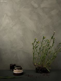 daniella-witte-jotun-lady-8469-Green-Leaf Faux Painting, Texture Painting, Jotun Paint, Jotun Lady, Tadelakt, Old Wall, Nordic Design, Living Room Colors, Minimalist Bedroom