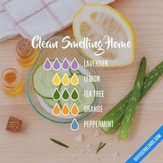 Awesome Clean hacks are readily available on our website. Check it out and you w… Awesome Clean hacks are readily available on our website. Check it out and you will not be sorry you. Essential Oil Diffuser Blends, Essential Oil Uses, Doterra Essential Oils, Doterra Diffuser, Aroma Diffuser, Healing Oils, Aromatherapy Oils, Essential Oil Combinations, Natural Cleaning Products