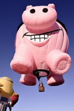 1000+ images about my flying pig Oink (he talks and flys ...