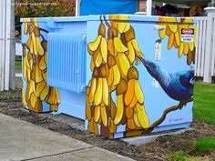 Painted Boxes: Kowhai and Tui