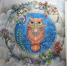 Johanna Basford Secret Garden Forests Enchanted Circles Owls Forest Maryland Colouring In Woodland