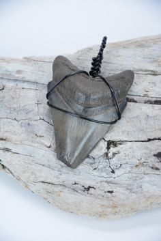Megalodon Shark Tooth Pendant by JustBeadHappy2 on Etsy https://www.etsy.com/listing/234021014/megalodon-shark-tooth-pendant