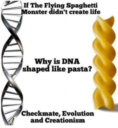 Life, Evolution, and Spaghetti: If The Flying Spaghetti onster didn't create life Why is DNA shaped like pasta? Checkmate, Evolution and Creationism Flying Spaghetti Monster, Religious Humor, Losing My Religion, Anti Religion, True Religion, Athiest, Fresh Memes, Best Funny Pictures, Funny Jokes
