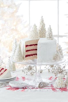 Showstopping Christmas Cake Recipes: Spice Cake with Cranberry Filling