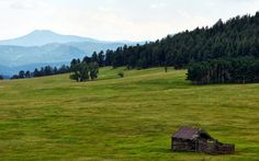 Noble Meadow Elk Preserve, Evergreen, Colorado