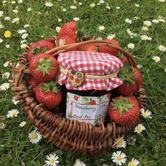 picnic uploaded by 🍥🐰MιssCαһ🐰🍥 on We Heart It Nature Aesthetic, Red Aesthetic, Aesthetic Pictures, Aesthetic Songs, Aesthetic Themes, Cottage In The Woods, Cozy Cottage, Cottage House, Cottage Gardens