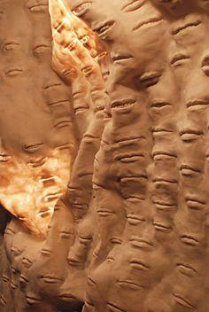 John Grade. Preserve (canyon),