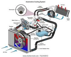 Find Automotive Cooling System Infographic Diagram Showing stock images in HD and millions of other royalty-free stock photos, illustrations and vectors in the Shutterstock collection. Thousands of new, high-quality pictures added every day. Road Traffic Safety, Mécanicien Automobile, Refrigeration And Air Conditioning, Toyota Corona, Automotive Engineering, Radiator Hose, Car Hacks, Cooling System, Jeep Accessories