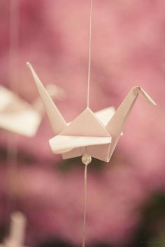 Origami Paper Crane - 1000 Cranes for Prosperity and Happiness! Photography: The Wedding Artist's Collective 1000 Paper Cranes, 1000 Cranes, Origami Paper Crane, Origami Love, Origami Cranes, Origami Wedding, Diy Wedding, Wedding Vintage, Wedding Shot