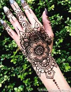 Pure Organic Henna – Pure Organic Henna and Jagua Rosen Tattoo Frau, Henna Cones, Body Art, Organic, Pure Products, Tattoos, Tatuajes, Tattoo, Body Mods