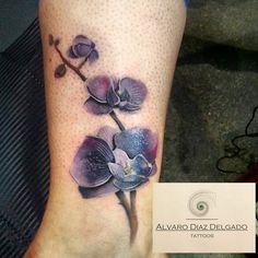 Purple Orchids by Alvaro Diaz Delgado