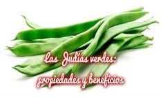 Las Judías verdes: propiedades y beneficios | Cuidar de tus plantas es facilisimo.com