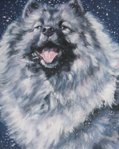 keeshond in twilight snow by L.A. Shepard an great artist!