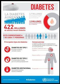 alojamiento para estudiantes con diabetes
