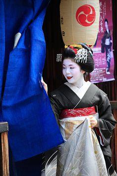 Hassaku|八朔 祇園 舞妓 Paper Umbrellas, Japanese Painting, Japanese Outfits, Japan Art, Japanese Artists, Yukata, Chrysanthemum, Japanese Culture, Traditional Outfits