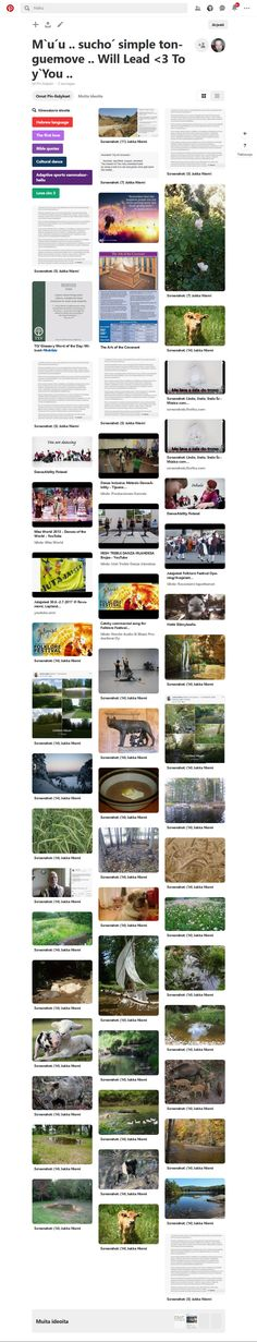 Screenshot: Pinterest Blessed, Peace, Sobriety, World