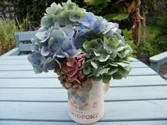 Drying hydrangea flowers for Autumn at driedflowercraft.co.uk