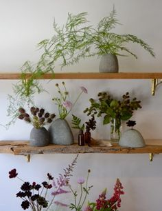 i want rock vases like this.  and reclaimed wood shelving.
