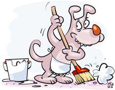 Acabe com pulgas e carrapatos usando produtos naturais e eficientes, sem intoxicar cães e gatos! - Notícias do Dia Online