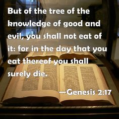 Genesis 2:17 But of the tree of the knowledge of good and evil, you shall not eat of it: for in the day that you eat thereof you shall surely die.