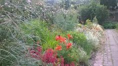 Preston park walled garden