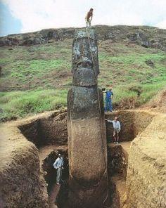 """Man geht davon aus, dass die Steinfiguren bearbeitet wurden, im (halb-)fertigen Zustand Statuen den Hang des Rano-Raraku an Seilen herunter gelassen wurde und auf halber Höhe des Hanges wurden die Moais in Gruben stehend """"zwischengelagert"""". Dort wurden sie dann in der Regel fertiggestellt. Zahlreiche mehr oder weniger fertige Statuen stehen heute noch dort. Von den Gruben ist allerdings nichts mehr zu sehen, weshalb nur die Köpfe herausragen."""