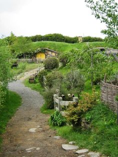 I MUST VISIT THE HOBBIT HOUSES IN NEW ZEALAND!