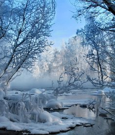 finallymyescape:    Frosty trees in winter wonderland by *KariLiimatainen