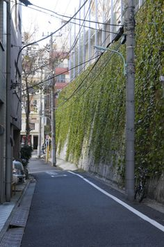 Shibuya streetside between city sections