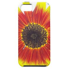 Beautiful Red and Yellow Sunflower iPhone 5 Cover