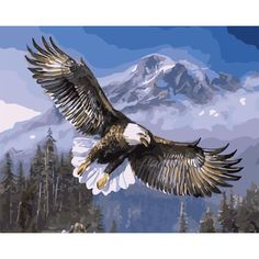 Home Wall Decor Coloring By Numbers Hand Painted DIY Digital Oil Painting By Numbers Canvas Oil Painting Eagle wings Pictures #Affiliate