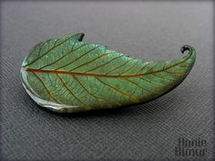 The Green Leaf | Flickr - Photo Sharing!