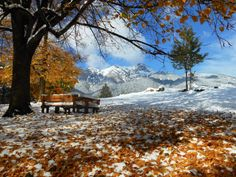 Autumn, Val di Fiemme, Italy