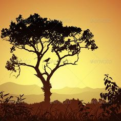 VECTOR DOWNLOAD (.ai, .psd) :: https://sourcecodes.pro/article-itmid-1003075565i.html ... Tree Silhouette ...  bird, branch, country, countryside, forest, grass, illustration, landscape, meadow, rural, silhouette, tree, vector, woods  ... Vectors Graphics Design Illustration Isolated Vector Templates Textures Stock Business Realistic eCommerce Wordpress Infographics Element Print Webdesign ... DOWNLOAD :: https://sourcecodes.pro/article-itmid-1003075565i.html
